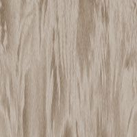 Wood Texture 1 by ogiGamedev