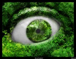 Eye of Nature by FLixter