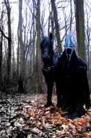 Witch king with his horse by PhotoNovotna