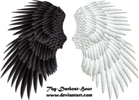Good and Evil Wings 03 PNG by Thy-Darkest-Hour