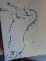 Seahorse - 2nd step by Cameos-Equine