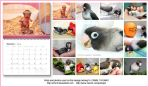 Lovebird calendar, Pocky series by emmil
