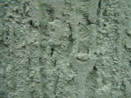 Texture- Wall 10 by texture-resources