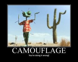 YOU'RE DOING  IT WRONG: CAMOUFLAGE by BabyClassicSonic