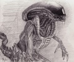 H.R giger Alien drawing by Wykdtron