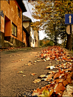 Street in autumn by sspace7