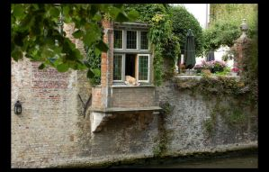 Bruges I - Sweet dog life by LostRomantic