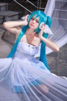 Hatsune Miku. White wings by gorlitsa
