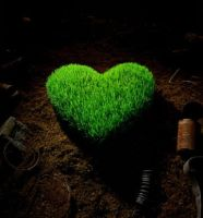 green heart by lince-rock