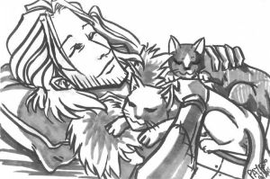 Postcard trade - Anders + cats by PayRoo