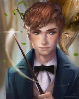Fantastic Beast and Where To Find Them by pradesta
