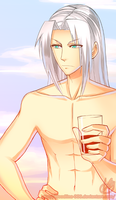 A day on the beach - Sephiroth by BloodlineV