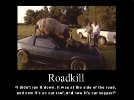 Roadkill by psbox362