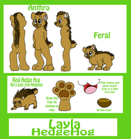 Layla Reference Sheet Commission by Sockune