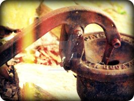 the rusty pump by x--photographygirl