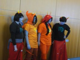 Nekocon pictures 28 by dogo987