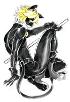 Inktober 003 - Chat Noir by vythefirst