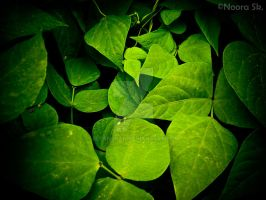 ... Green Nature ... by Eleanorah