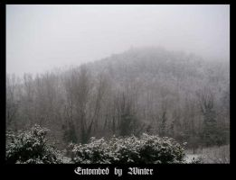 Entombed by Winter by ibhexe
