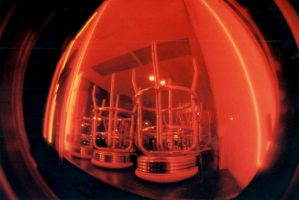 fisheye 1 by sarabil1