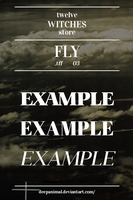 26 Fly.tff by 12WitchesStore