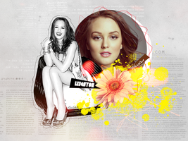 Leighton Meester collage II by Balancoire