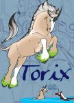 EE May 2011 - Torix by Dwelian