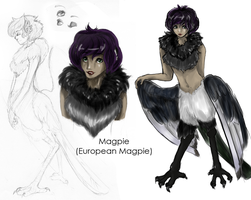 Magpie by Timatae