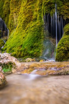 Moss Fall by knilch