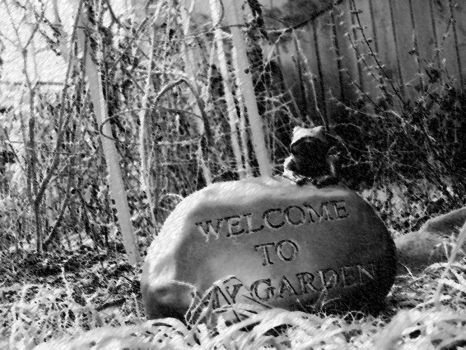 Welcome To My Garden by RavenC