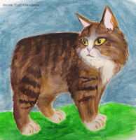 Manx in Watercolor by CatopumaBadia