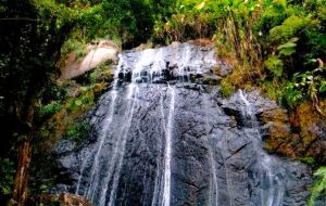 Waterfall El Junke Puerto Rico by spidermonkeykiss
