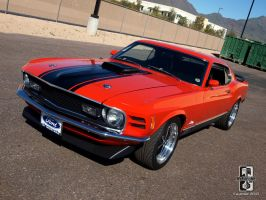 428 Stang by Swanee3