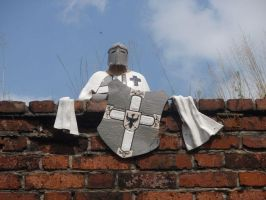 Teutonic Knight by Woolfred