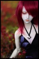 So much more than red by yenna-photo
