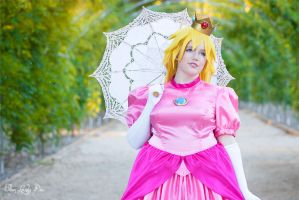Nintendo: Princess Peach VI by ellenlovely