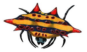 Doria's Spiny orb-weaver by NocturnalSea