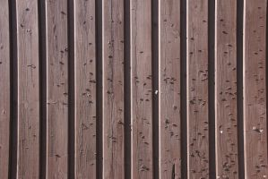 Wall with staples by Kvaale