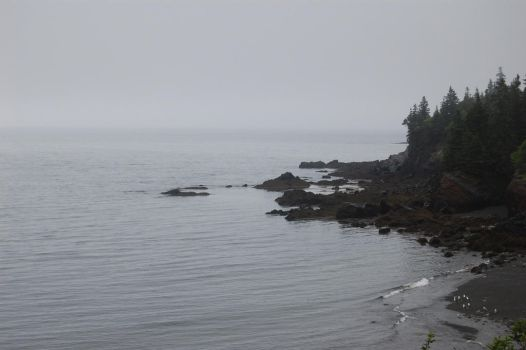 Foggy Day: Cove View 3 by angelaiko