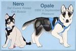 Nero and Opale Ref by WagginKennelClub