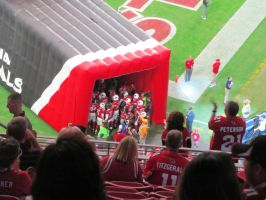 2014 Cardinals Take the Field 1 by BigMac1212