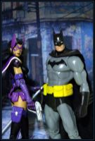 Batman and Huntress by my-toys