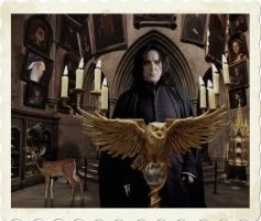 Severus director by Angeliqueperrin