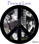 Peace and Love by Robinlvr