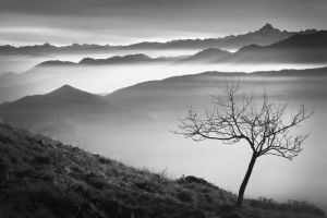 Above the Mist by RobertoBertero