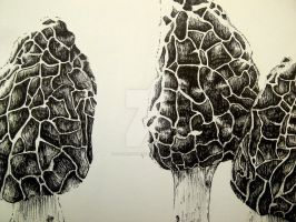 AP Drawing Concentration 7 (2012-2013) by InsaneRasberry
