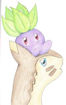 The Oddish and The Furret (Color) by Chishio-chan