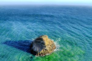 Point Reyes National Seashore V by M-Lewis