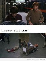 Hi, I'm Harry Potter... Welcome to Jackass! by Artof-Nothing