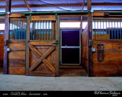 Stable Stock - 8 by ElaineSeleneStock